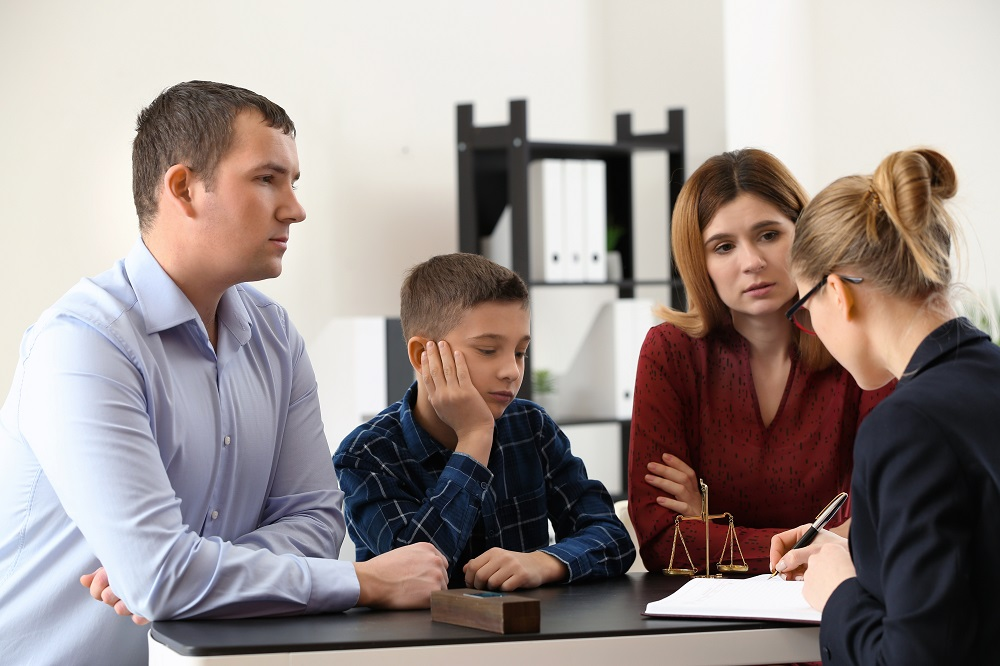 Family Lawyer (2)